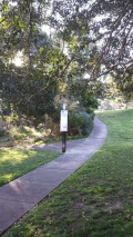 Marrickville Peace Park2